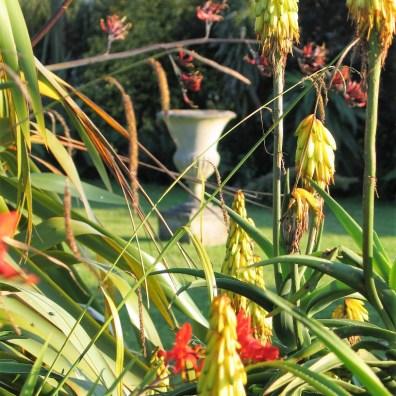 summer garden floral abundance frame an urn