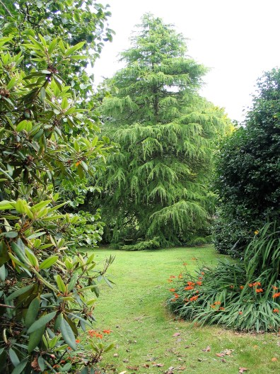 Lush lawns stretch to specimen trees