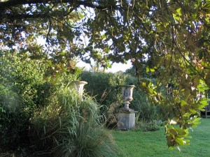 Trees arching over distant urns - September garden