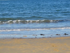 Soft waves trickling to the baech