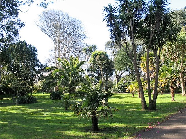Sub tropical planting Penlee Gardens