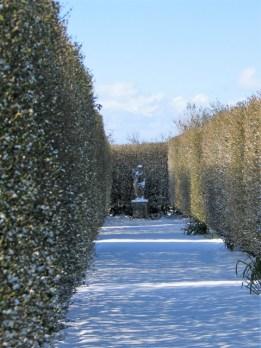 Formal garden in the snow