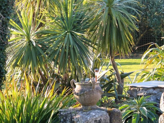 Evening sunshine of the terrace -garden diary