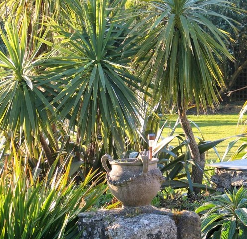 Evening sunshine of the terrace -garden diary