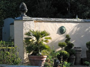 Palms and topiary - ednovean farm courtyard