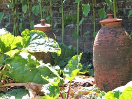 Rhubarb pots in the kitchen garden