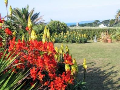 View across garden to the sea
