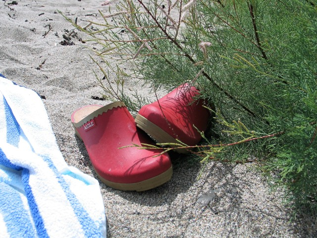 Red shoes tamarisk and sand on a secluded beach