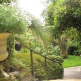 Steps down to the Lamorran garden