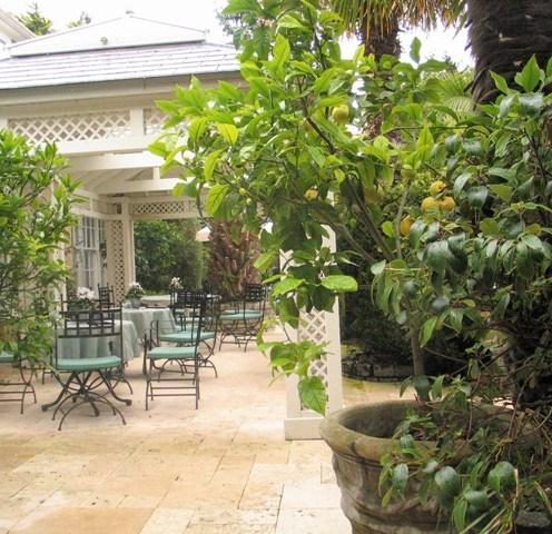 Elegant cafe terrace