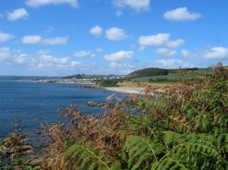 Bracken parting to reveal cove in autumn
