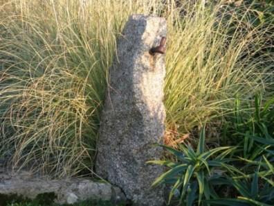 Granite post and pampas leaves
