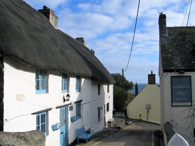 Thatched cottage - Cadgwith