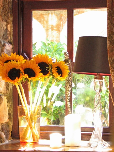 Sunflowers on a window cill