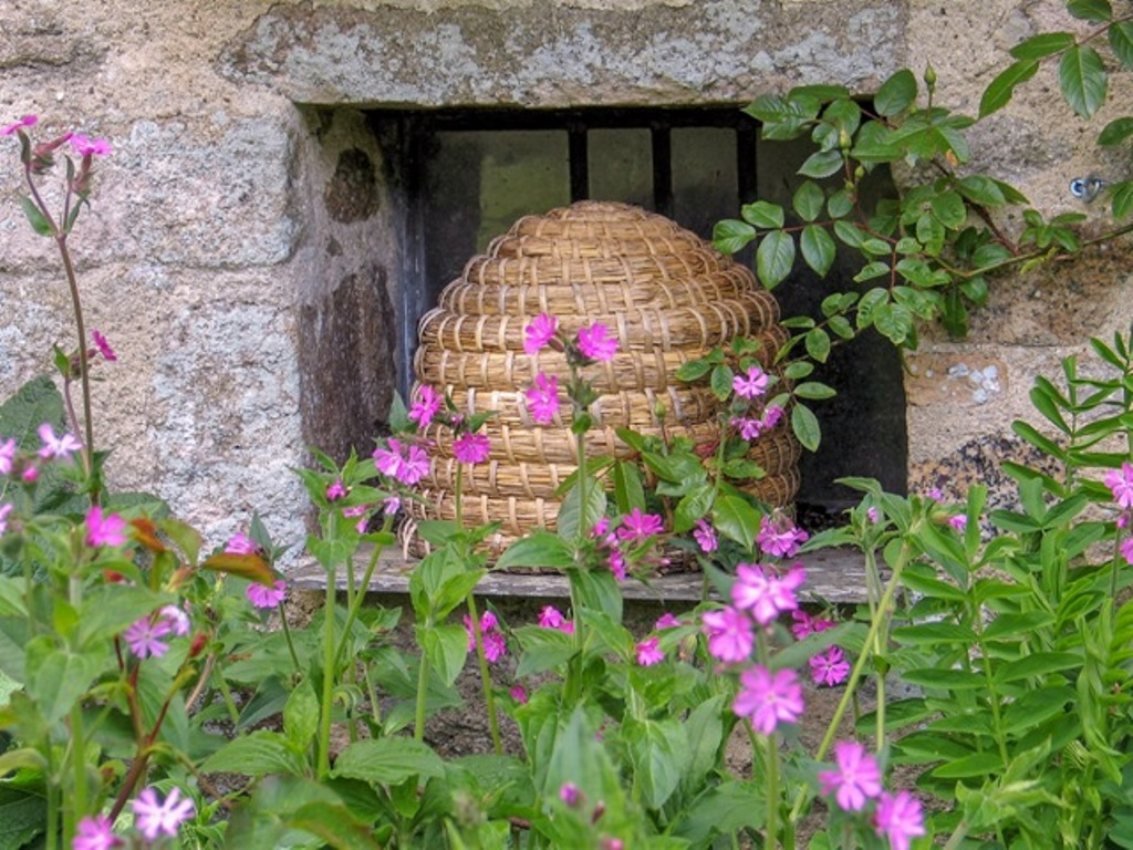 Woven Bee Skep in granite niche