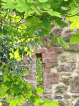 Lime mortar restoration - pointing