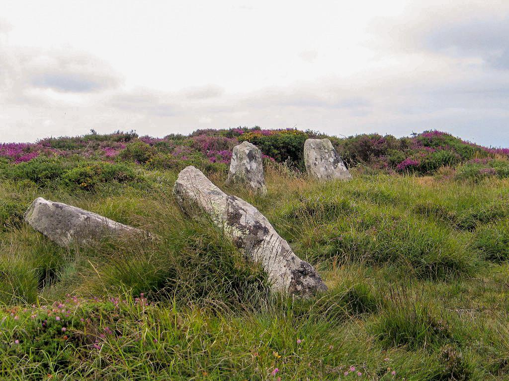 Partly fallen stone circle Boskednan