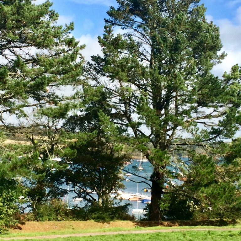 The car park at Helford has wonderful views over the estuary and yatchs