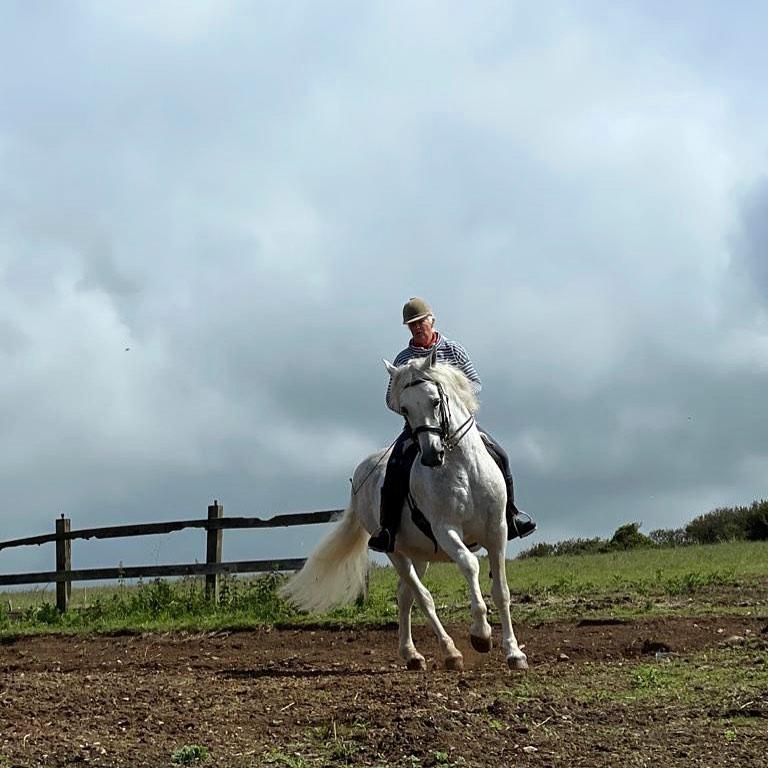 Christine Taylor and Danilon Spanish stallion Ednovean Farm