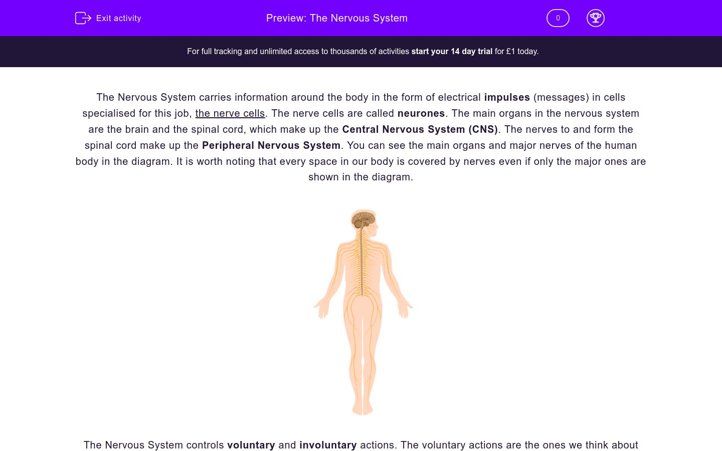 Understand The Nervous System Worksheet