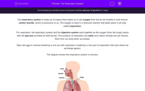 small resolution of  the respiratory system worksheet
