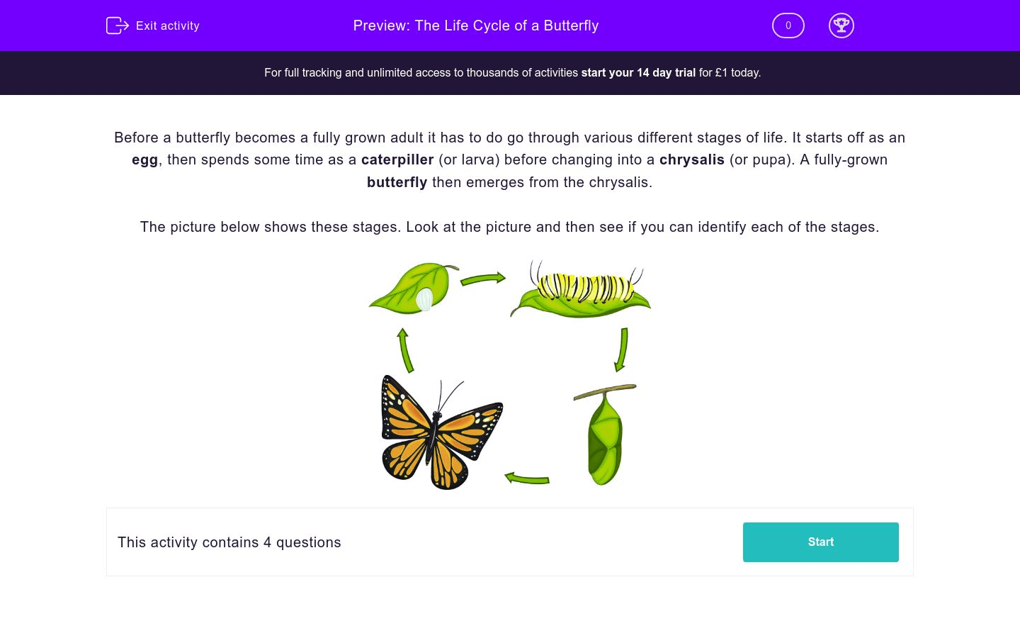 The Life Cycle Of A Butterfly Worksheet