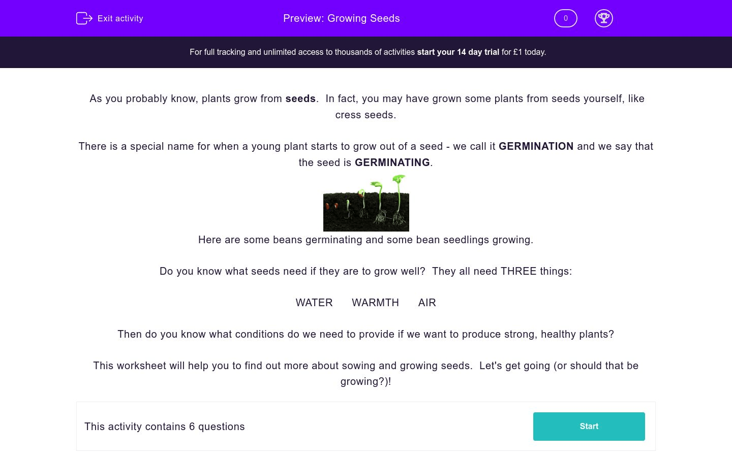 Growing Seeds Worksheet