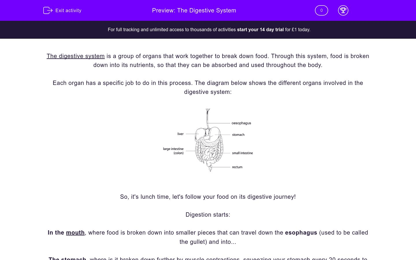hight resolution of The Digestive System Worksheet - EdPlace