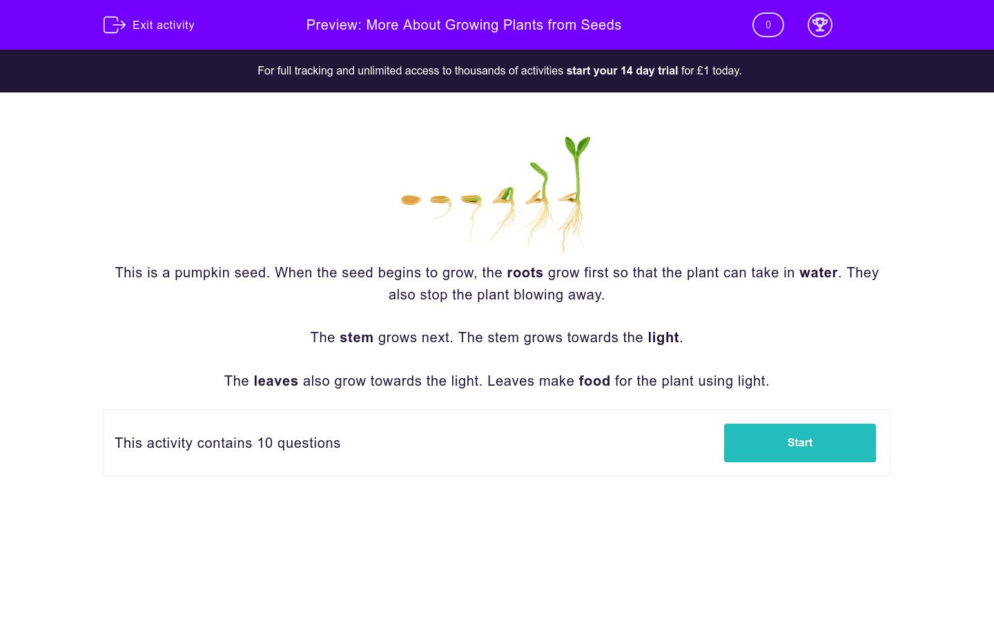 More About Growing Plants From Seeds Worksheet