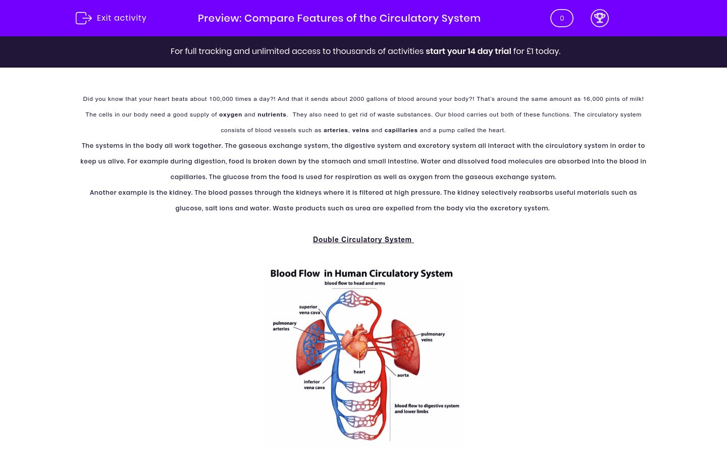 Compare Features Of The Circulatory System Worksheet