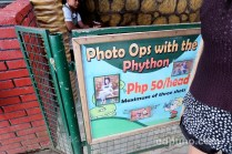 photo ops with python zoo