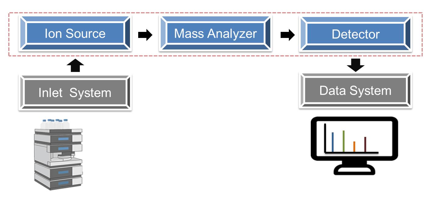 美國 Creative Proteomics : 質譜技術Mass Spectrometry Technology - 龍欣科技股份有限公司 (EDRAGON TECHNOLOGY CORPORATION)