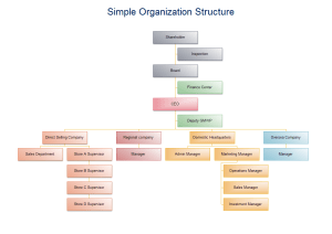 Simple Organization Structure Templates and Examples