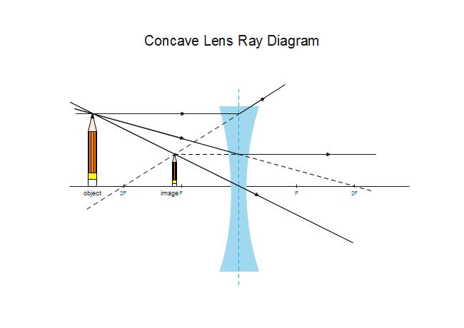 Example of Scientific Illustration