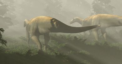 Australian dinosaur falsely accused of being a vicious monster