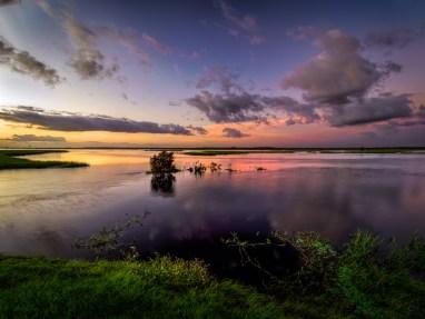 St. Johns River at dawn
