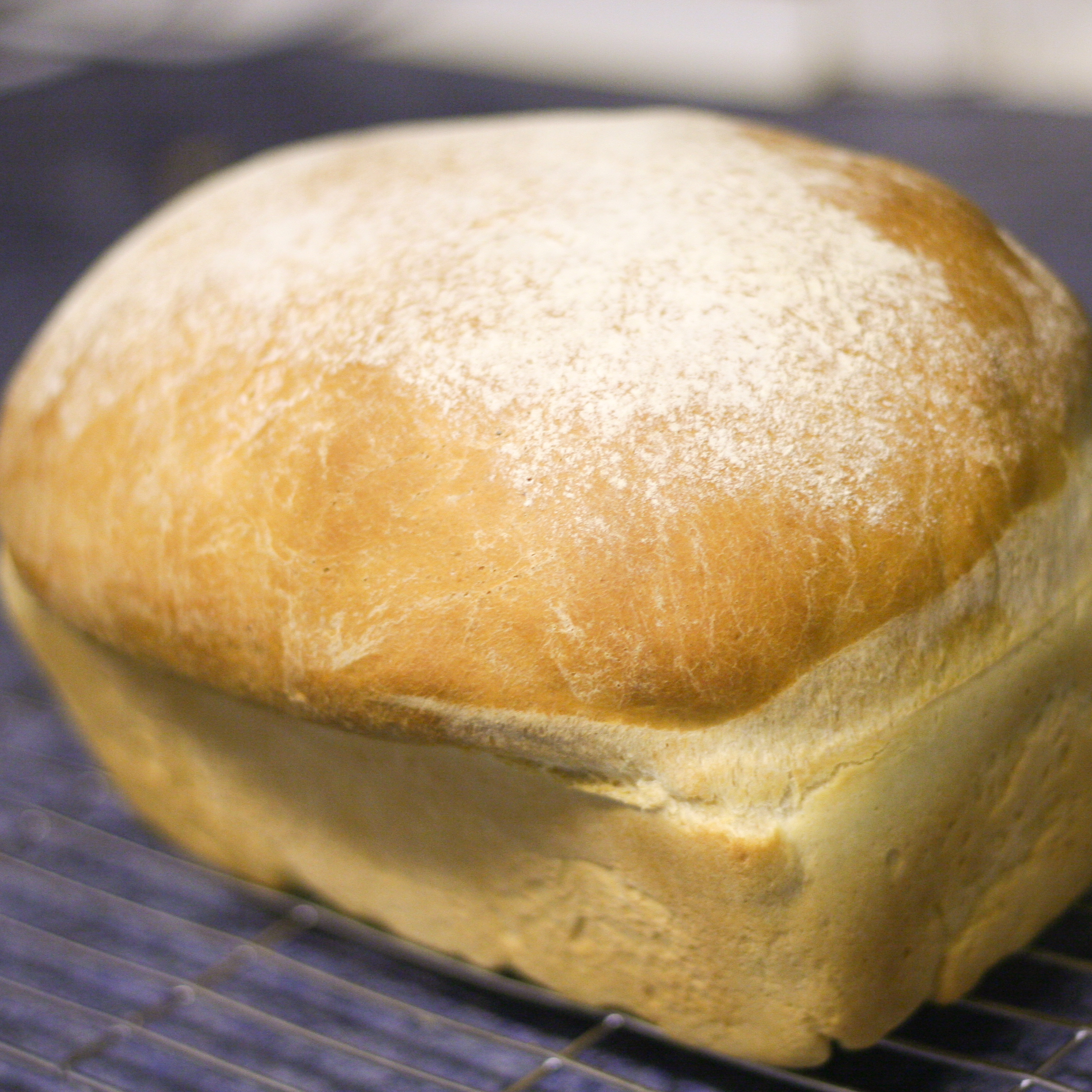 Bread Live Yeast Test Crafted Exploration