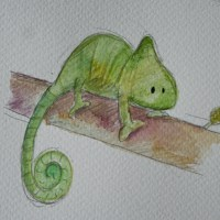 February Drawings