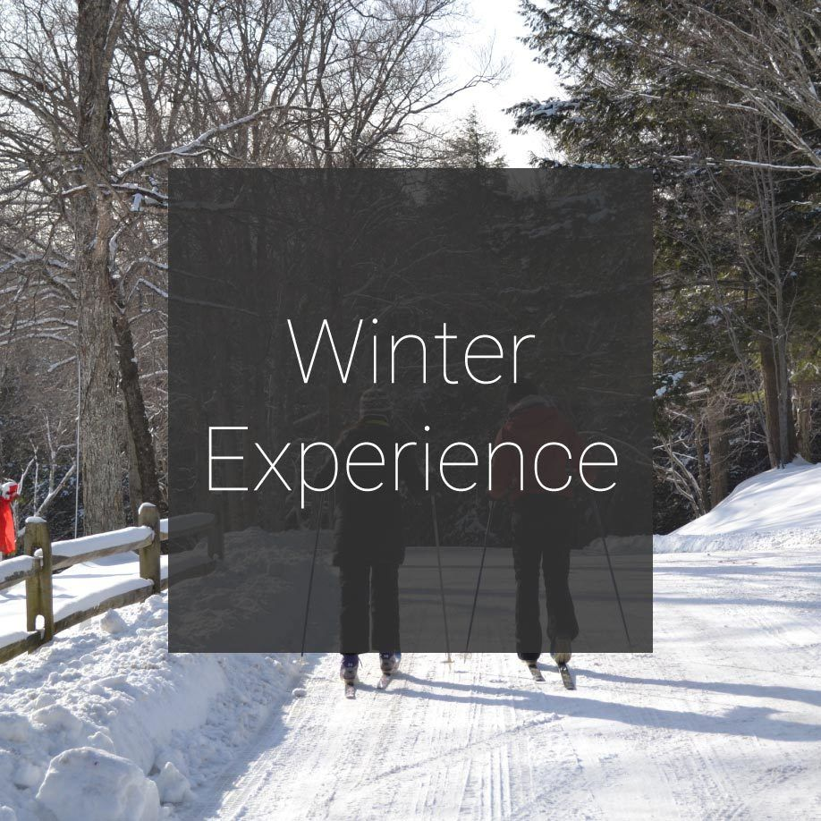 Edson Hill Winter Experience Promotion