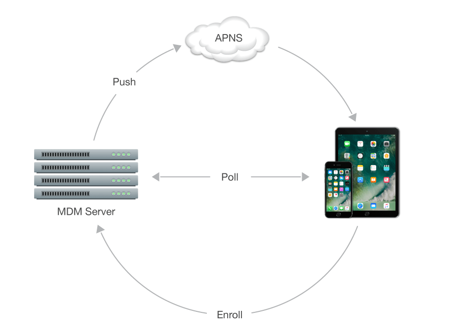 Find Your Perfect MDM Partner - Resources for Mobile Device