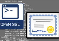 Convert .pfx to .pem Certificates Using OpenSSL