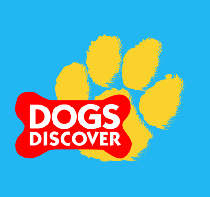 CREDIT Dogs Discover