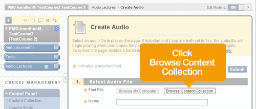 Create Audio - Browse Content Collection