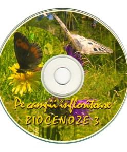RV3 DVD R 3