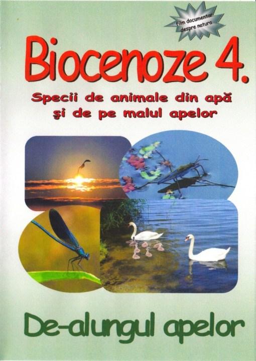 RV4 DVD R 1