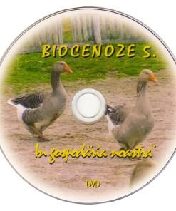 RV5 DVD R 3