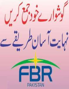 Submit Income Tax Return on FBR iris for Government & Private Employees