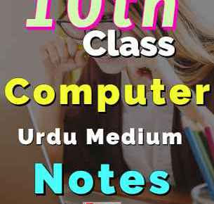 Download 10th Computer Notes Urdu Medium Complete Book fi