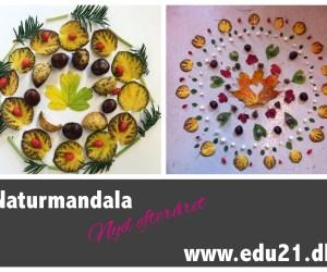 mandala land art
