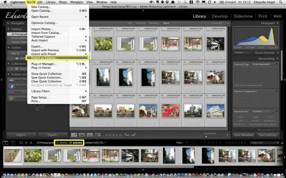 Export as Catalog Screengrab